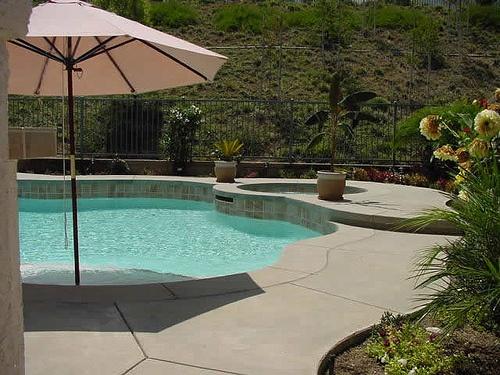 Custom Free Form Swimming Pool Design Pool Ideas Pinterest