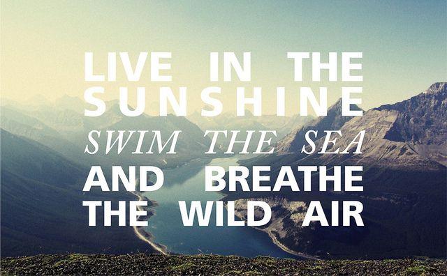 .: Life, Wild Air, Sunshine Swim, Inspirational Quotes, Summer, Sea, Things