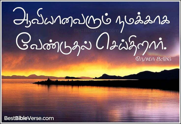 tamil bible words wallpapers - photo #10