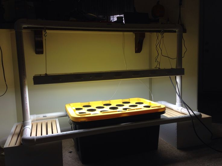 My hydroponic setup 27 gallon tote lowes 3060 gallon