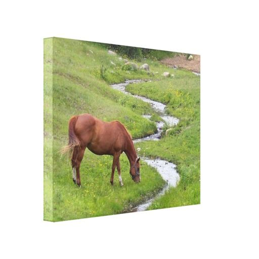 """==> reviews          """"My Favorite"""" Stretched Canvas Print           """"My Favorite"""" Stretched Canvas Print today price drop and special promotion. Get The best buyShopping          """"My Favorite"""" Stretched Canvas Print Review on the This website by click the butto...Cleck Hot Deals >>> http://www.zazzle.com/my_favorite_stretched_canvas_print-192858179708005980?rf=238627982471231924&zbar=1&tc=terrest"""