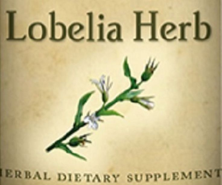 LOBELIA HERB All Natural Herbal Tincture Nutritional Dietary Supplement Herb