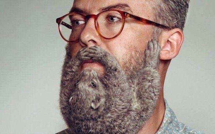 männer bart ideen kreativität kreative entscheidungen ideen zum stylen und gestalten graue bart ideen mann collage