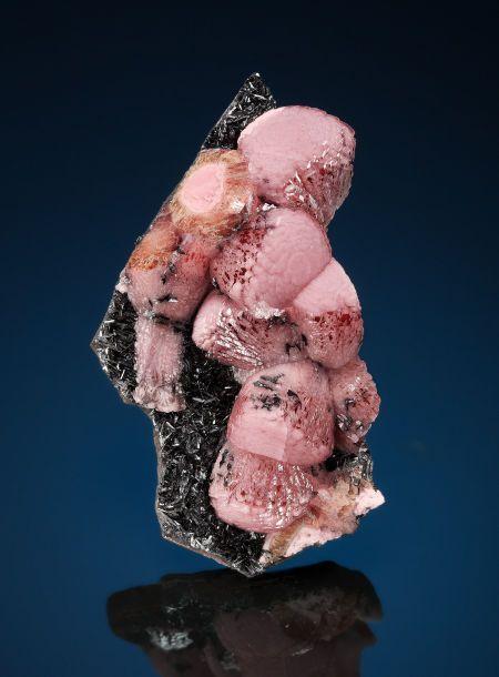 "RHODOCHROSITE  N'Chwaning I Mine, N'Chwaning Mines, Kuruman, Kalahari Manganese Fields, Northern Cape Province, South Africa   One of the more exotic of habits shown by Rhodochrosite from South Africa is the strange ""shaving brush"" style of this matrix specimen from the N'Chwaning Mine of the Kalahari Desert."