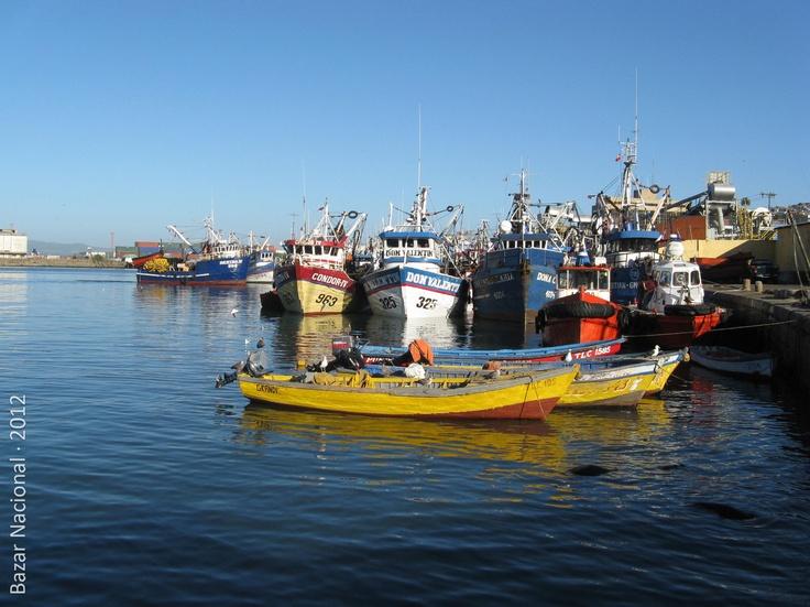 Lugar: Talcahuano, VIII Región del BíoBío | Fecha: Marzo 2012 | Cámara: Canon Powershot A720 is