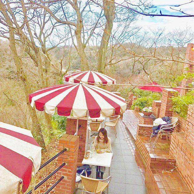【arika_imura】さんのInstagramをピンしています。 《ずっと気になっていた鎌倉にある #カフェテラス樹ガーデン 🌲🌲🌲 * 入口まで長ーい階段を登った先に ある秘密基地のようなcafe☕️ 季節的に緑がないのが 残念なんだけど😭💦 店員さんがとっても親切でなんだか リラックスできる空間🌿 * ストレスが溜まったらここのcafeに また行きたいなあ🌿 * ブログに鎌倉のオススメcafe アップしたよ~☕️🍴 * #cafe#kamakura#green#garden#relax#coffee#鎌倉#カフェ#森#鎌倉カフェ#カフェ巡り#森カフェ》