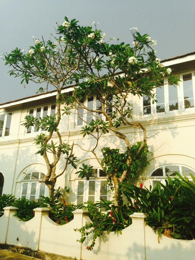 Sri Lanka, Bentota