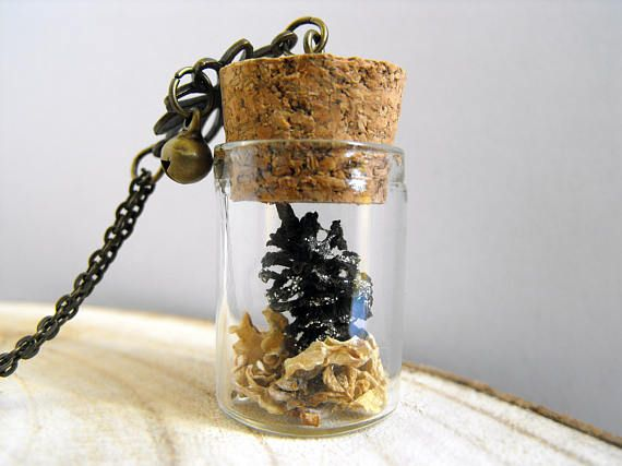 Romantic pine cones vial necklace nature inspired vial jewelry