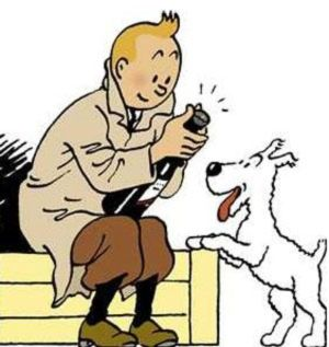 Kuifje / Tintin, brainchild of Hergé.