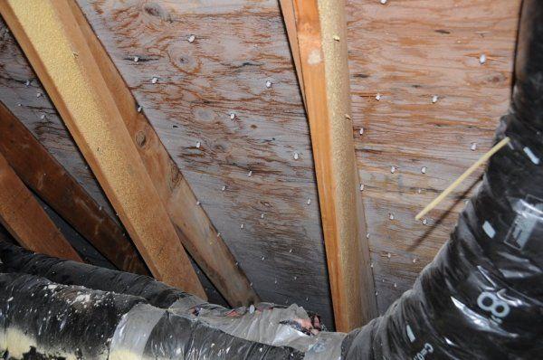 Attic Insulation Problems And Solutions Part 2 Ted S Energy Tips Attic Insulation Attic Renovation Attic Flooring