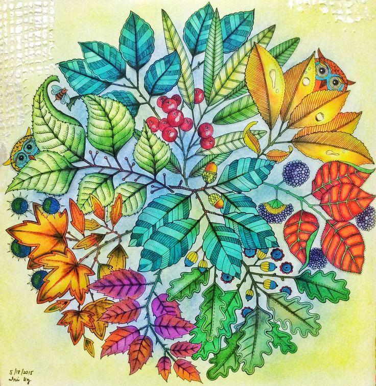 36 Best Mandala Owls Secret Garden Mandala De Corujas