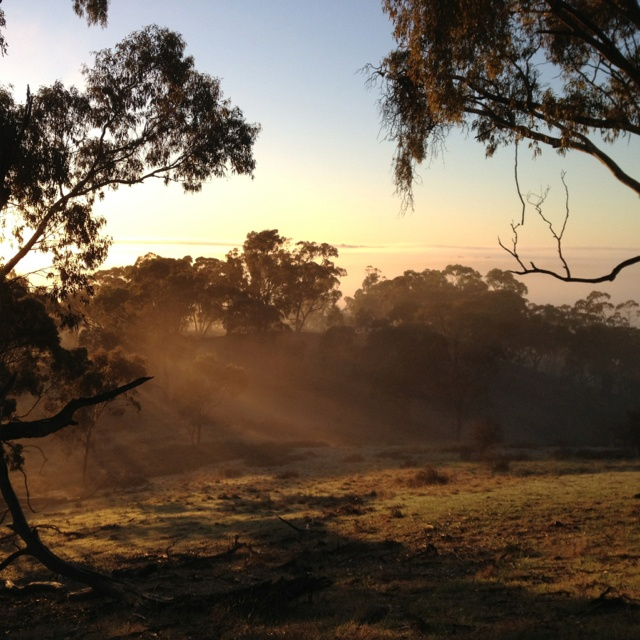 Clare Valley at sun rise...