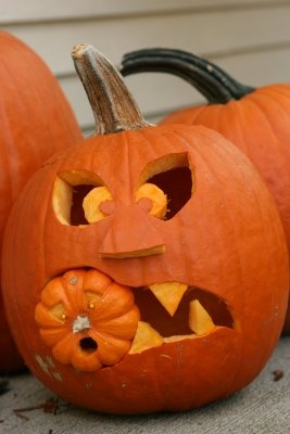 17 Best Images About Funny Pumpkins Amp Halloween