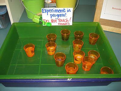 In this experiment, students are using the Scientific Method of Question, Hypothesis, Procedure, Observation and Conclusion to investigate changes in matter.
