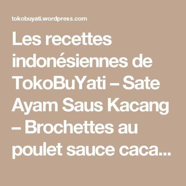 Les recettes indonésiennes de TokoBuYati – Sate Ayam Saus Kacang – Brochettes au poulet sauce cacahuètes « Toko bu Yati