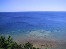 Lake Huron.jpg Il Lago Michigan ed il Lago Huron sono fisicamente un unico bacino. Se considerati separatamente, l'Huron ed il Michigan sono rispettivamente il terzo ed il quarto tra i più estesi laghi d'acqua dolce.