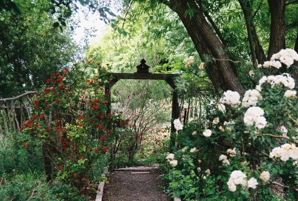 Chambers Secret Garden - Odessa, Texas