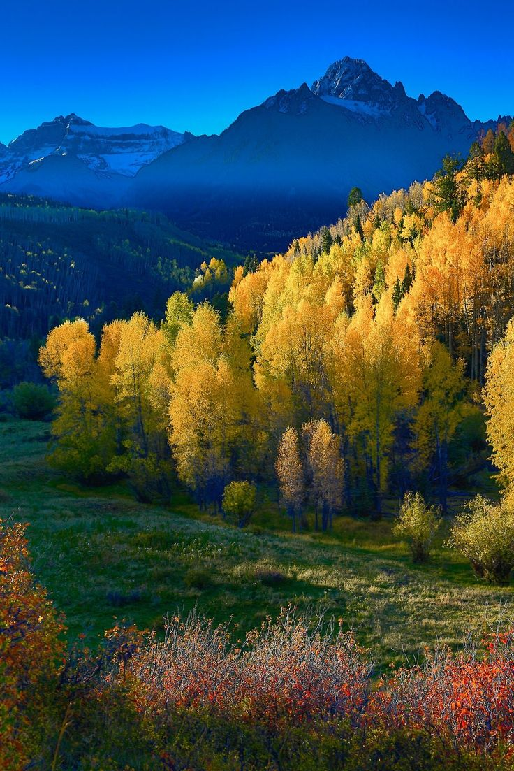 Colorado Fall Colors Jerry Patterson