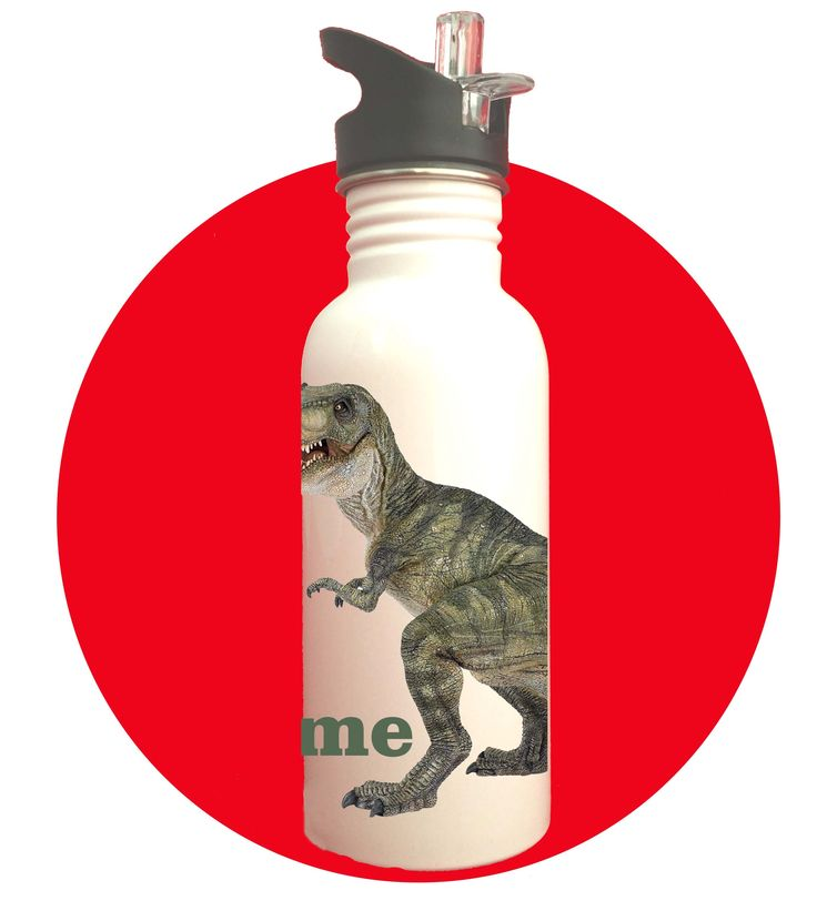 DINO 3 STAINLESS STEEL DRINK BOTTLE - GREEN NAME (PERSONALISED) $21.00 inc gst
