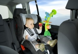 Babymoov Activity Palm Tree. 6+ months Keeping baby amused in the car and at the table is possible with the Activity Palm Tree