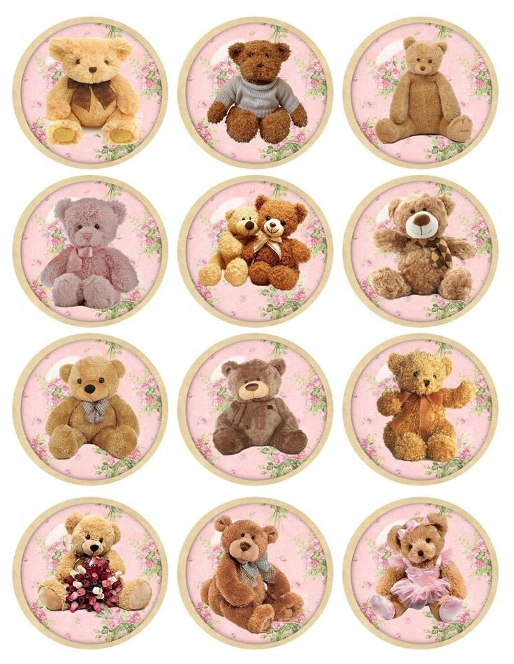 Vintage inspired round teddy bear stickers flowers bottlecap assorted sizes