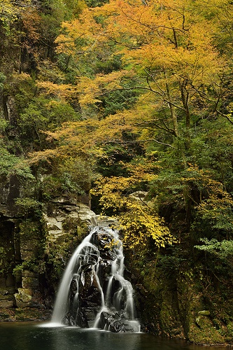 Akame 48 Waterfalls #japan #mie