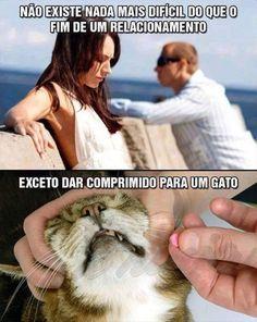 compri+gato.jpg (236×296)