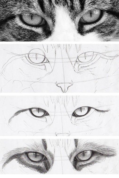 Best 25+ Animal drawings ideas on Pinterest | Nature paintings ...