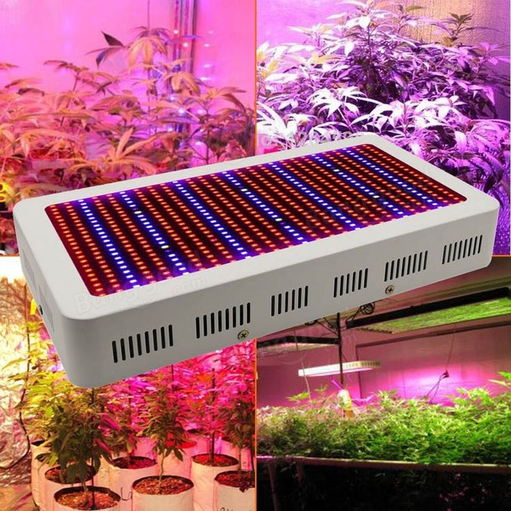 Amazing W Gardening Full Spectrum LED Plant Grow Light Greenhouse Plant Seedling Lamp at Banggood