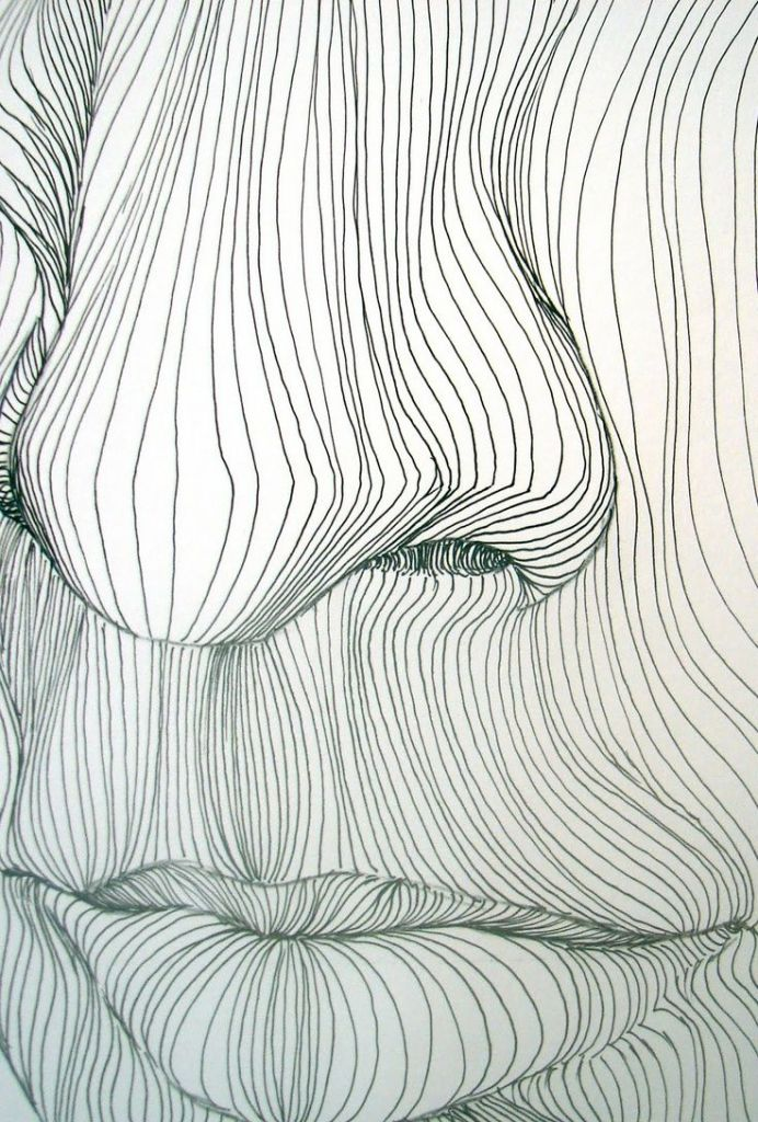 Cross Contour Lines 1000 Images About Art Lessons On Pinterest Contour Drawings