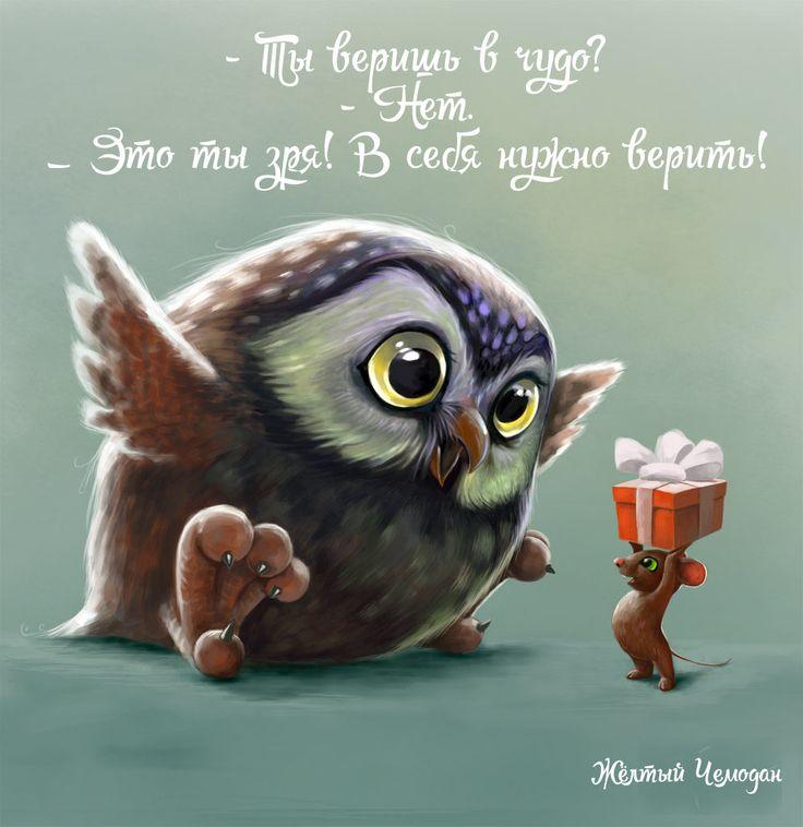 Owl sova-jpg.158470 (994×1024)