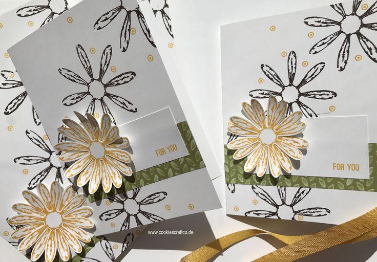 Gänseblümchen - Frühlingsfrische Karten