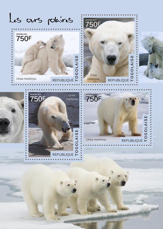TG 14520 aPolar bears (Ursus maritimus)