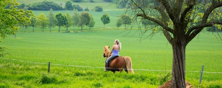 Bauernhof- und Landurlaub in Thüringen - Urlaub, Reisen und Hotels in Thüringen