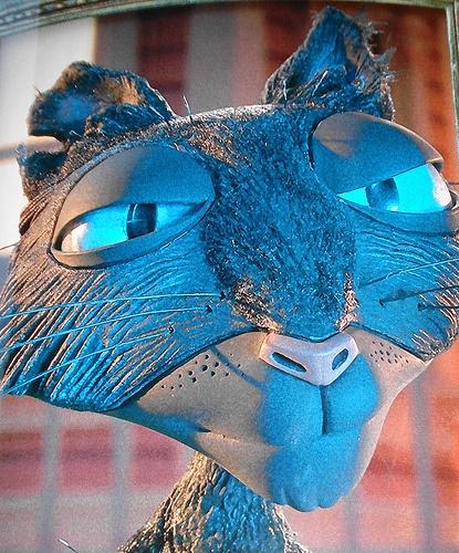 Coraline cat
