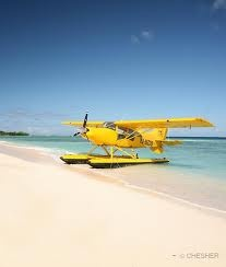 I will own a yellow seaplane