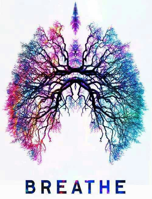 Inhale through your nose, exhale through the nose. Ujjay!
