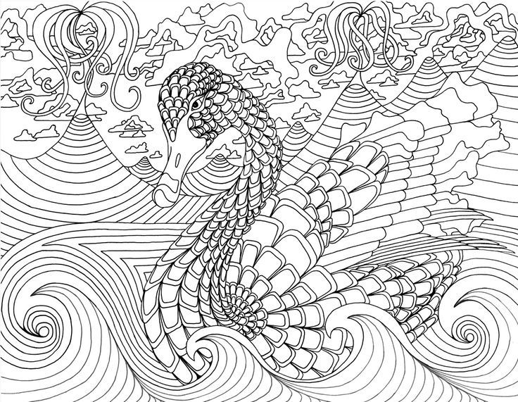 """secret garden coloring pages completed operations   17 Best images about iColor """"Feathered Friends"""" on ..."""