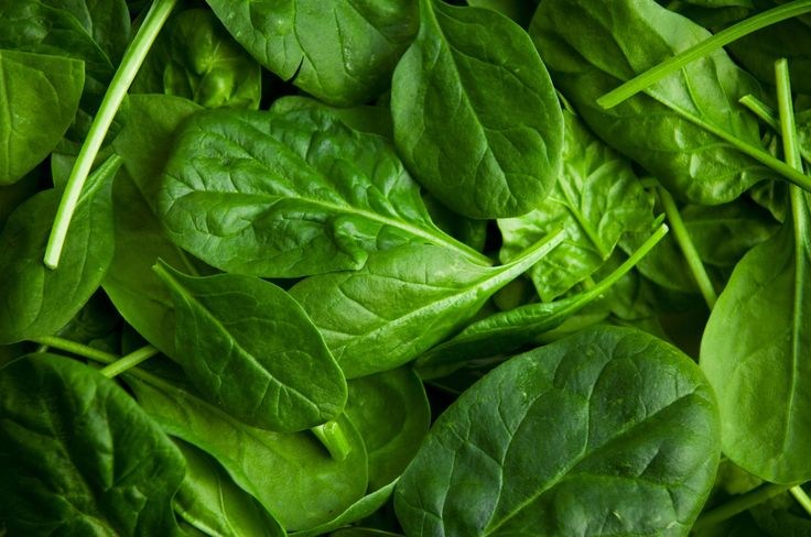 """Spinach ~ Bone Builder  A renowned muscle builder, spinach is rich in vitamin K, which will bolster bone-mineral density (thus protecting against osteoporosis) and reduce fracture rates. Spinach is high in calcium, phosphorus, potassium, zinc, and even selenium, which may help protect the liver and ward off Alzheimer's.  carotenoid neoxanthin in spinach can kill prostate cancer cells, while the beta-carotene fights colon cancer. . """"one cup of cooked spinach, or two cups raw, four times a…"""