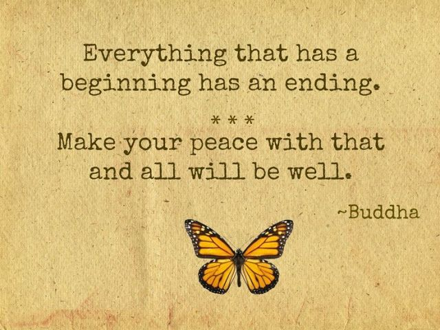 Image result for butterflies zen sayings