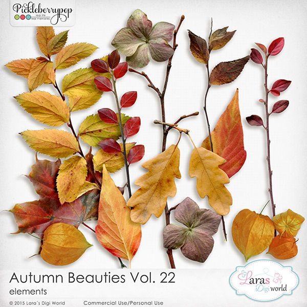 Autumn Beauties Vol. 22 by Lara's Digi World