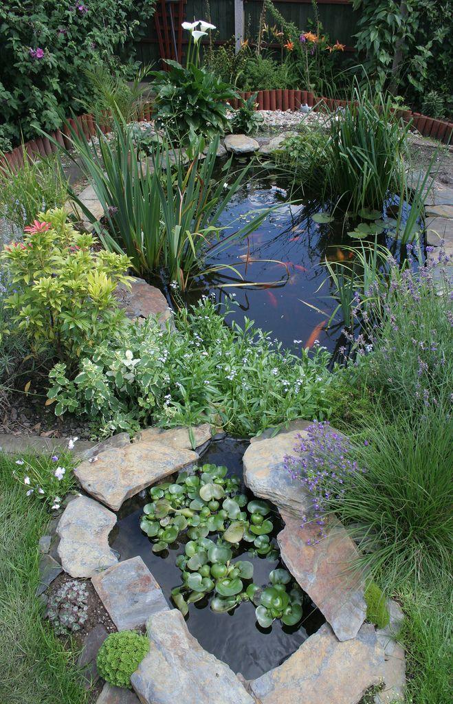 Garden Pond 2 Water Gardens And Aquatic Plants Ponds Backyard
