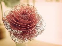 skeleton leaf rose - not sure if this is 'real' or craft work. but if real, I would love to have in my garden!