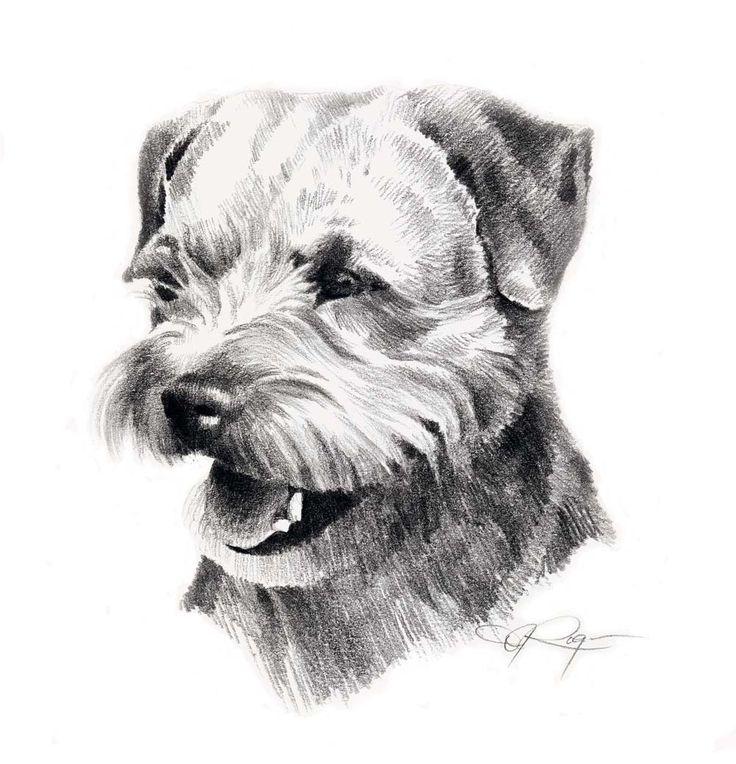 BORDER Terriër hond kunst print ondertekend DJ Rogers door k9artgallery op Etsy https://www.etsy.com/nl/listing/11389256/border-terrier-hond-kunst-print