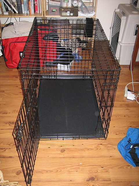 """Very nice dog crate for sale: retails for $120, used only about 6 months. Good for training and as a """"safe"""" place for dogs to sleep. Our dog is 50 pounds and has plenty of room, even with a very thick bed placed inside.    Black metal, 36"""" long, 24"""" wi Dog toys for yout dog to play with.    Repin if you approve them."""