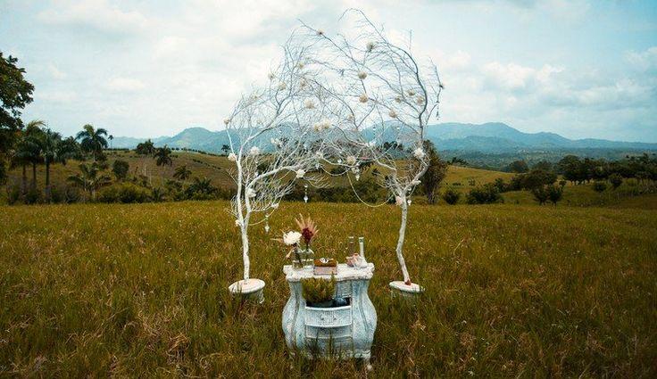 déco mariage champêtre -branches-decoratives-buffet-ancien-deco-florale