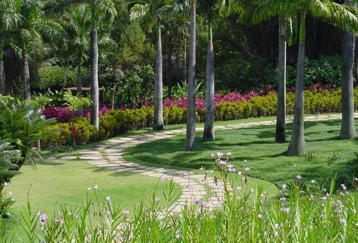 Paisagismo: Jardim Botânico e Museu Inhotim | Paisagismo Digital