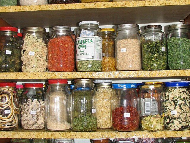 How to Dehydrate (tons of veggies/fruit ideas)