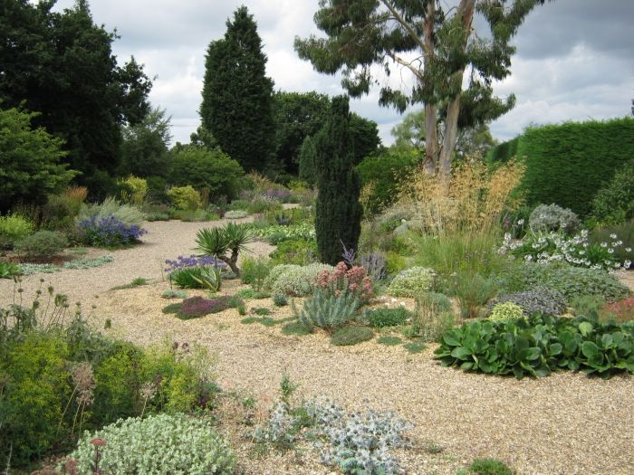 image detail for gravel or mediterranean planting style