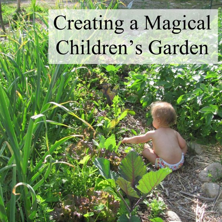 best 25+ children garden ideas on pinterest | kid garden, kids